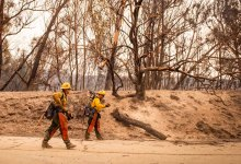 Alisal Fire Increases to 14,500 Acres; FEMA Assistance Granted