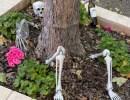 In-Person: Dia de los Muertos Celebration at Brander Vineyard